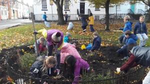 bulb-planting-4