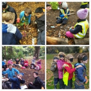 forest-schools-3